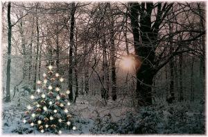 2016-12-christmas