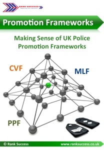 Free guide to promotion frameworks