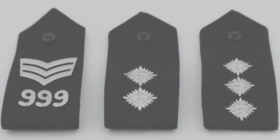 Police badges inspector